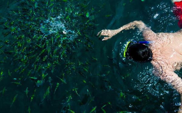 Berjaya Tioman Resort 4D3N Snorkeling Package