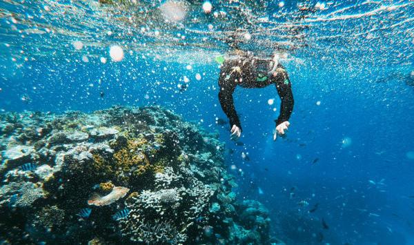Diving at Tioman