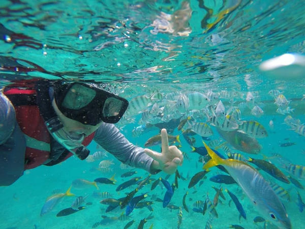 Get Up Close With The Fishes While Snorkeling At Paya Beach Resort