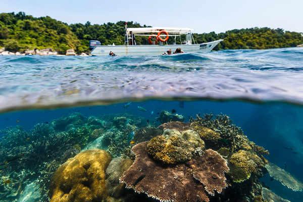 Coral Island at Tioman