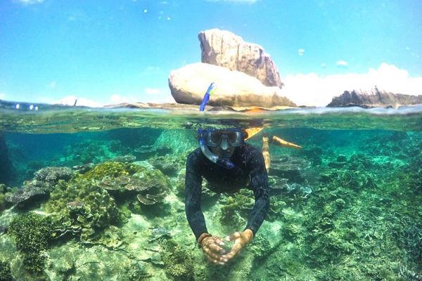 4D3N Tioman Salang Indah Resort Snorkeling Package