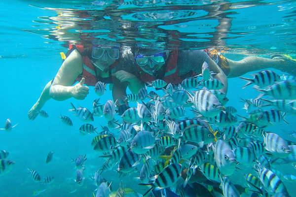 Snorkeling among the fish at Tioman Island