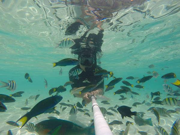 Snorkelling At Rawa Island