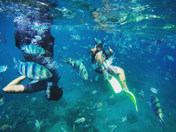 Snorkelling at Salang Reef Tioman Island