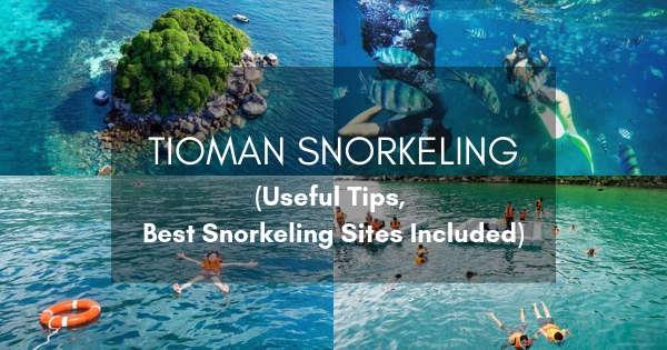 Tioman Snorkeling Guide
