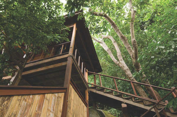 Tree Top Chalet At JapaMala Resort